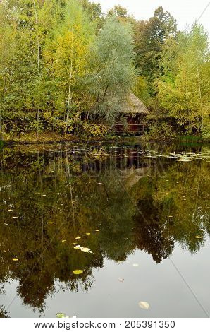 Reflection in autumn pond near Kiyev Ukraine