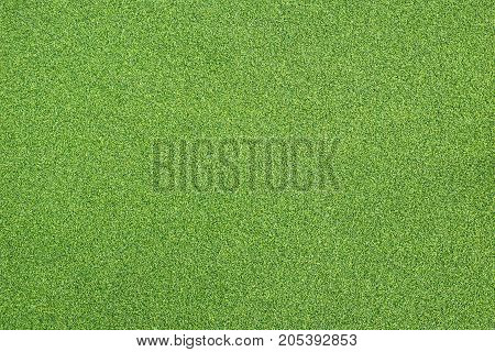 Bright Green Artificial Grass Can Use For Background And Design.