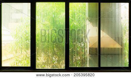 Tree outside window glass etching. Big glass window.