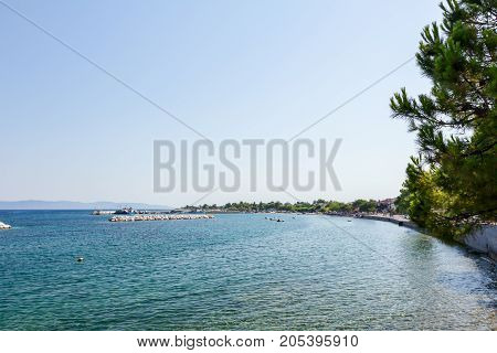 View through conifer canopy on beautiful shallow turquoise water with reef along seashore.