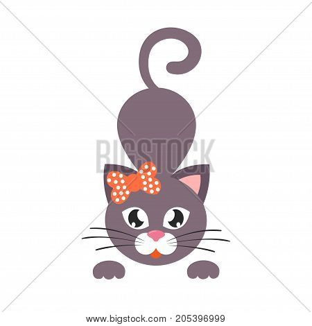 Vector image of a cartoon cat with bow vector