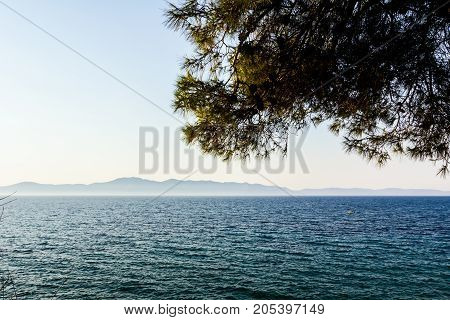 Landscape of open sea with green vegetation canopy of the pine tree islands are far away in background.