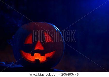 Jack-o-lantern pumpkin head in the darkness of a spooky autumn forest copyspace.