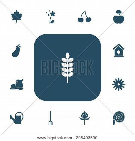 Set Of 13 Editable Agriculture Icons. Includes Symbols Such As Frond, Birdhouse, Hay Fork And More