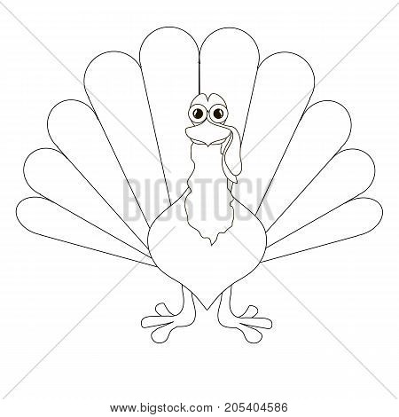 Sketch of turkey thin black line on white stock vector illustration