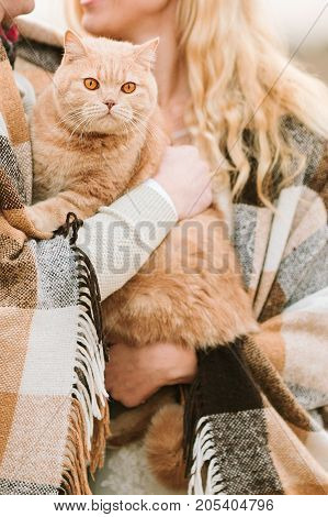 animals, love, nature, autumn concept. couple of lovers wrapped in plaid holding carefully their magnificent ginger cat that has awesome eyes in colour of orange