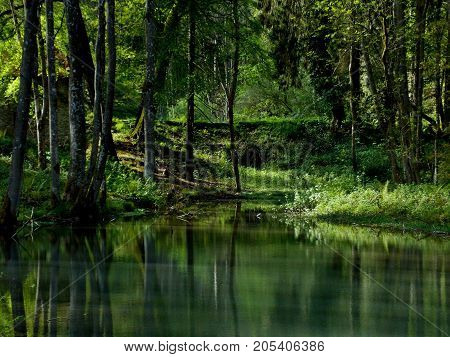 A green peaceful lake, with reflections on the water.