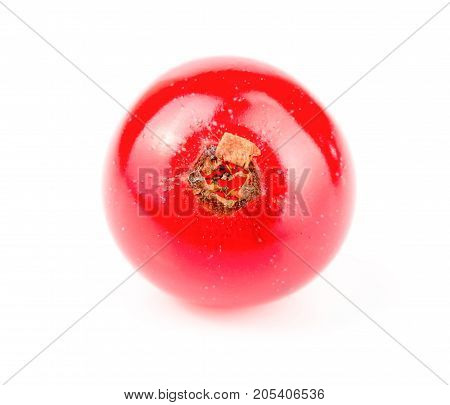 Red currant berry isolated on white background.