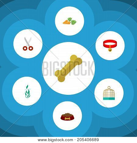 Flat Icon Pets Set Of Kitty Collar, Osseous, Dog Food And Other Vector Objects