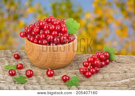Red currant berries in wooden bowl on wooden table with a blurry garden background.