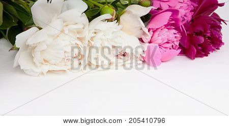 Amazing card with colorful peonies flowers lying on white background. Beautiful Horizontal Web Banner With Copy Space. Card for invitation congratulation.