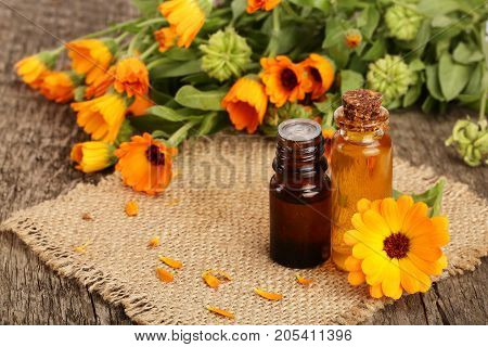 aromatherapy essential oil with fresh marigold flowers on old wooden background. Calendula oil.