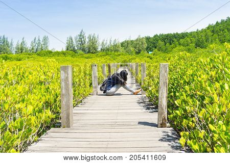 sad woman hug her knee and cryTung Prong Thong Golden Mangrove Field background.