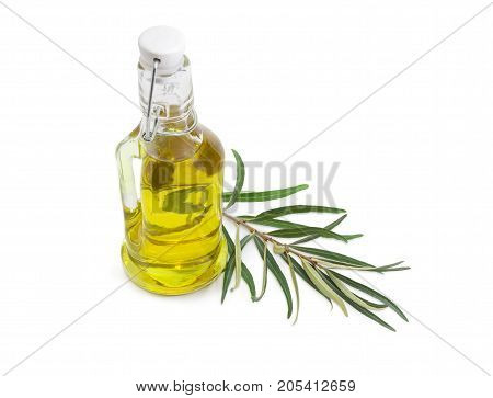 Small glass bottle of olive oil and olive branch beside on a white background