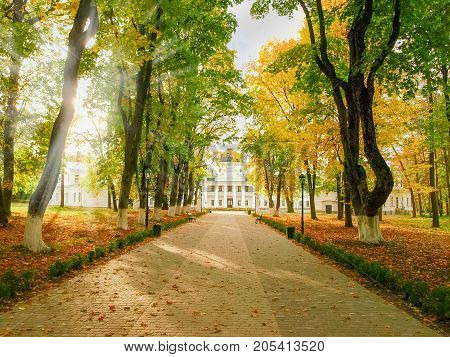 Alley in the autumn park and 18th century neoclassical palace on a background in national historic cultural preserve Kachanivka Ukraine