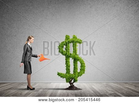 Young attractive businesswoman watering plant in ground with can