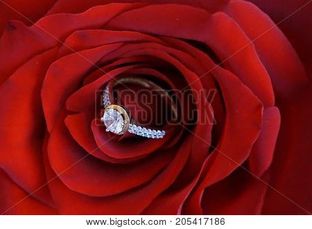 Big ring for engagement with zircons as a suprise for woman suitable as a portrait or background for wedding annoucement