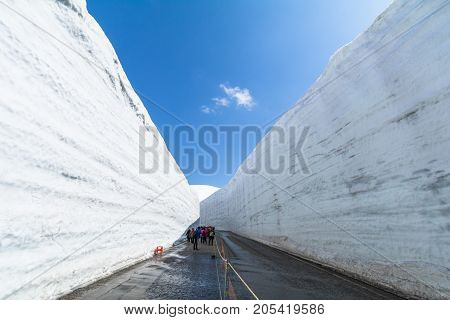 Road between snow wall of Tateyama Kurobe Alpine Route or Japanese Alps with blue sky background is one of the most important and popular natural place in Toyama Prefecture Japan.