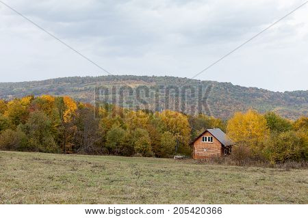 eco lifestyle, countryside, environment concept. nearby with hill on the edge of the glade there is multicolored autumn forest full of trees turned yellow and orange, they cover modern loghouse