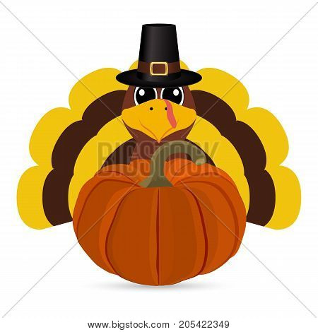 Funny turkey peligrimm with a pumpkin for Thanksgiving vector illustration
