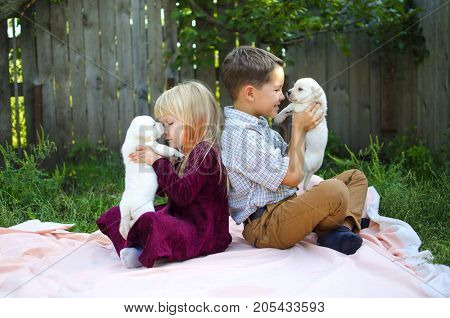 Sister and brother with dogs. Cut pets with girl and boy. Labrador puppy