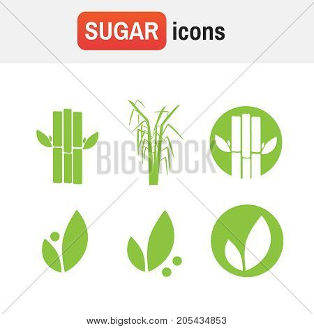 Sugar Cane Icon. Sugar Cane Illustration Vector