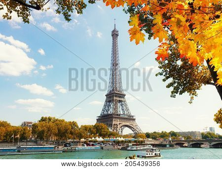 eiffel tour over Seine river with fall tree, Paris, France