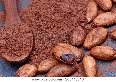 Cacao powder in a wooden spoon with beans on slate close-up