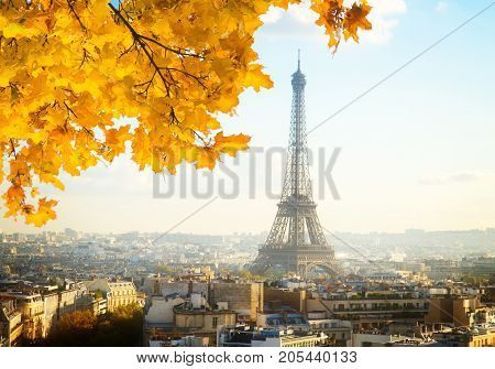 eiffel tour and Paris cityscape in sunny autumn day, France