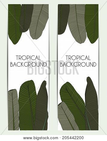 Beautifil Palm Tree Leaf Tropical Silhouette Background Vector Illustration EPS10
