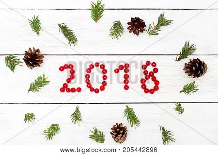 2018 from the red berries of the viburnum around the branches of the Christmas tree and pine cones