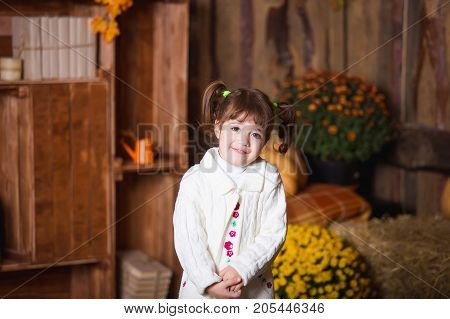 Portrait of adorable smiling girl posing with orange pumpkin in fall wooden interior