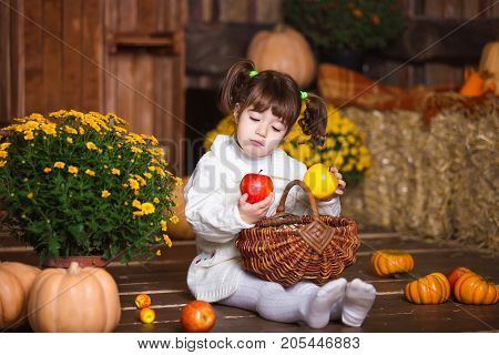 Portrait of adorable smiling girl posing with apple basket in fall wooden interior