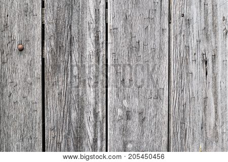 Old wooden rustic background. Vintage door detail