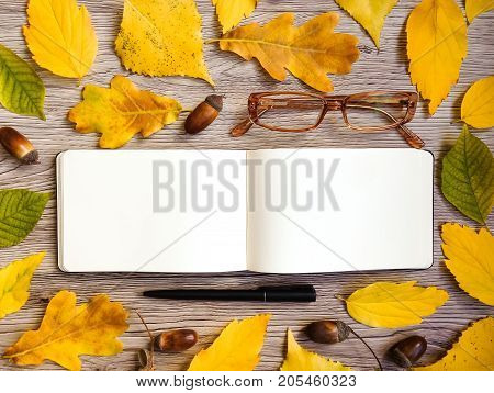 Closeup of sketchbook glasses and pen. Decorated with autumn yellow leaves acorns and branches on wooden background. Top view flat lay view from above