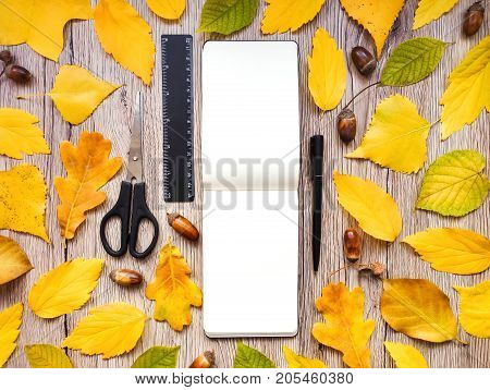 Closeup of sketchbook scissors ruler and pen. Decorated with autumn yellow leaves and acorns on wooden background. Top view flat lay view from above