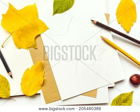 Autumn composition with sketchbook and pencils on white background decorated with yellow and green leaves. Fall still-life. Artistic workplace with leaf illustration. Flat lay top view