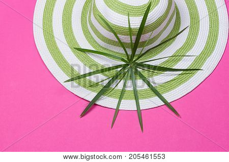 Beach hat and coconut leaves on pink background