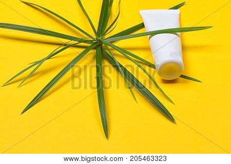 Cosmetic bottle container with green herbal leaves on the yellow background