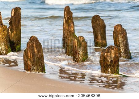 Old coastal protection with a breakwater. Wooden stakes in the sea. Autumn morning on the beach of the Baltic Sea