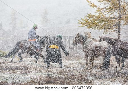 mongolian horsemen with their horses in a snow storm in northern Mongolia