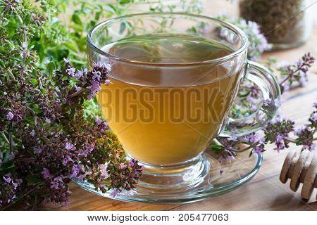 A Cup Of Breckland Thyme (thymus Serpyllum) Tea