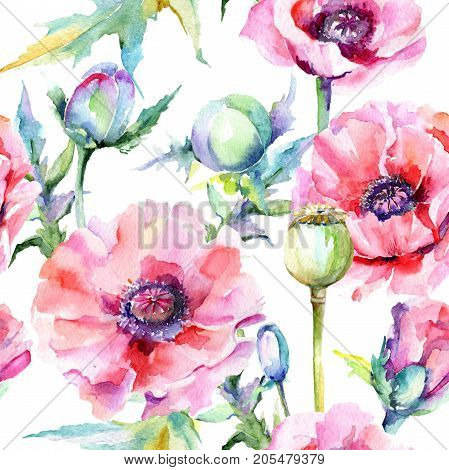 Wildflower poppy flower pattern in a watercolor style. Full name of the plant: pink poppy. Aquarelle wild flower for background, texture, wrapper pattern, frame or border.