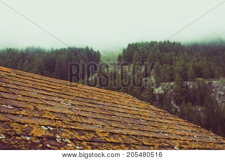 Wooden cabin roof with moss. In the background a tree-lined mountain. Vintage photo.