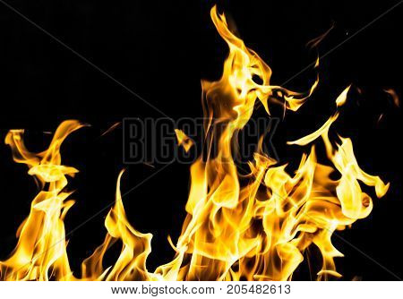 flame fire on black background . Photo of an abstract texture
