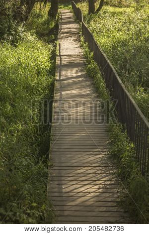 The shadow of the railing on an old wooden footbridge
