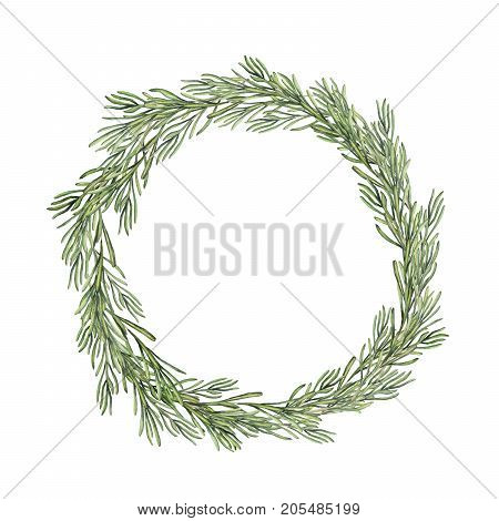 Watercolor rosemary wreath. Hand painted rosemary branch isolated on white background. Floral botanical border for design or print