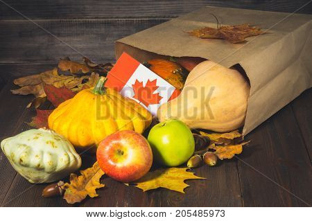 Happy Thanksgiving Day In Canada. Vegetables, Pumpkins, Squash, Apples, Maple And Oak Leaves, Acorns
