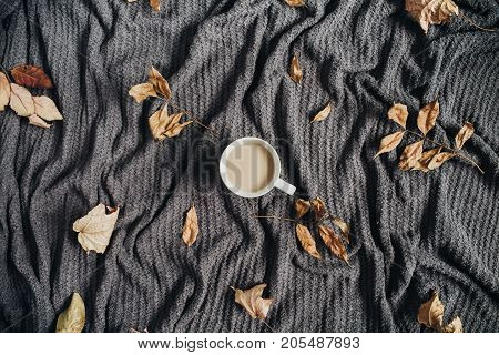 Coffee with milk and dry autumn leaves on warm terry plaid. Fall flat lay.