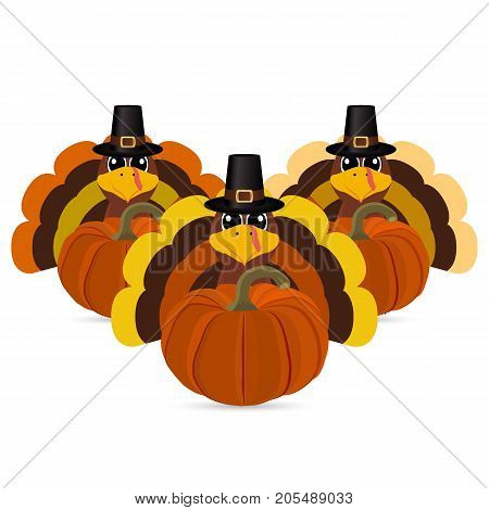 Turkeys cartoon with pumpkins vector illustration cartoon